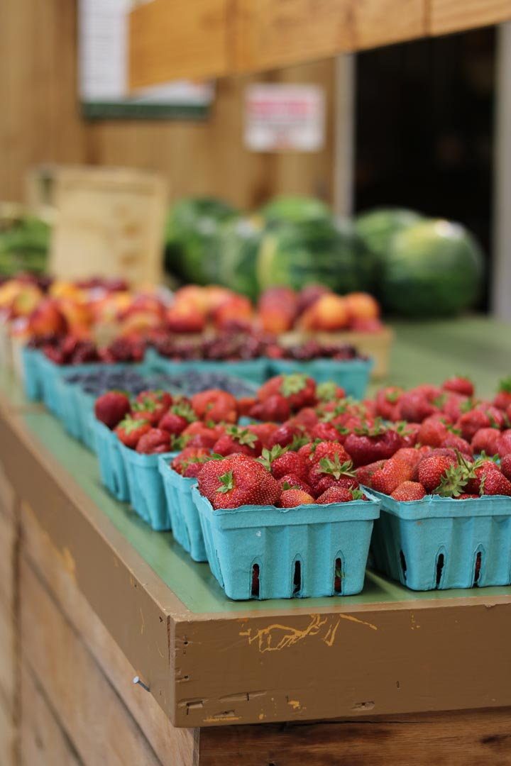 Local Fresh Picked Strawberries in Hanover, PA